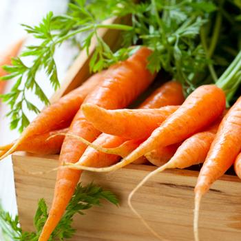 Eat-a-carrot