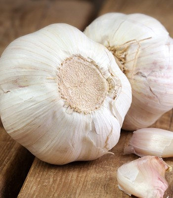 The benefits of garlic
